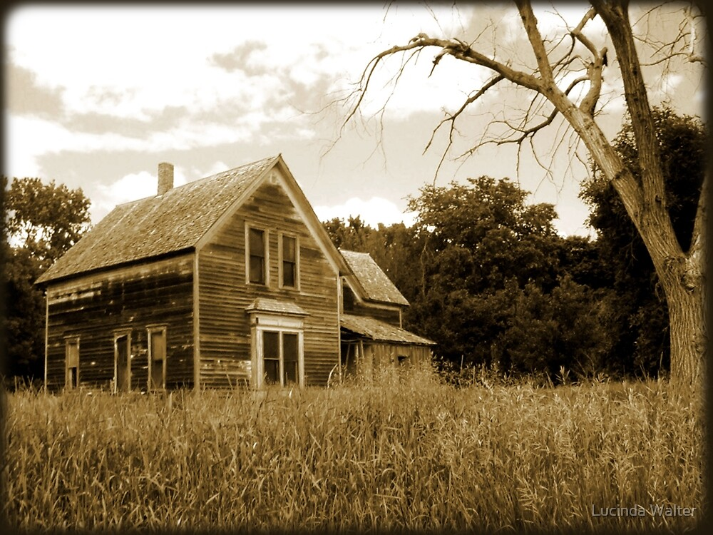 The Old Homestead by Lucinda Walter