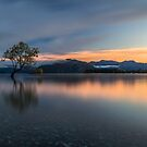 Sunrise in Wanaka by Joel Bramley