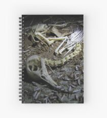 And Maggots Ate His Brain Spiral Notebook