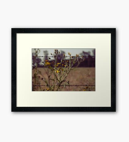 Life is what you focus on Framed Print