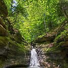 The Punch Bowl at Turkey Run State Park, Indiana by Kenneth Keifer