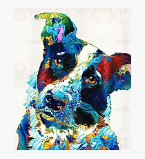 Colorful Dog Art - Irresistible - By Sharon Cummings Photographic Print