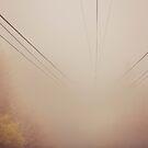 Into the Fog by vividpeach