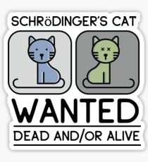 Cute Schrödinger's Cat Sticker