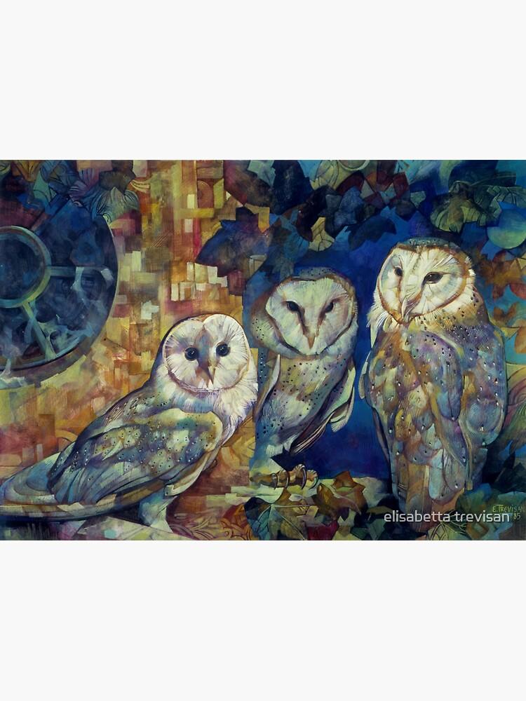 barn owls by betta