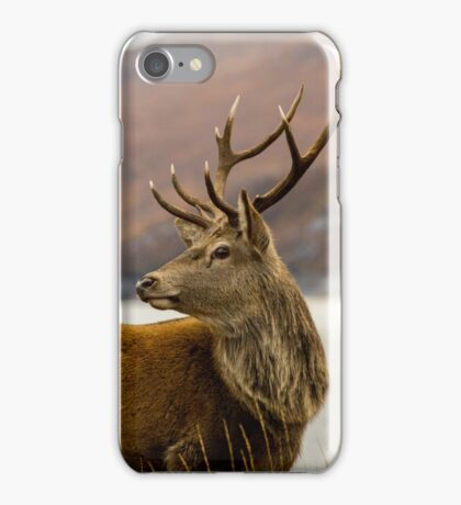 Autumnal Stag iPhone Case/Skin