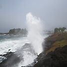 Depoe Bay, Oregon Spouting Horn by Zack Heistand