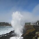 Depoe Bay, OR Spouting Horns by Zack Heistand