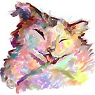 Colourful Cat by Rabbott