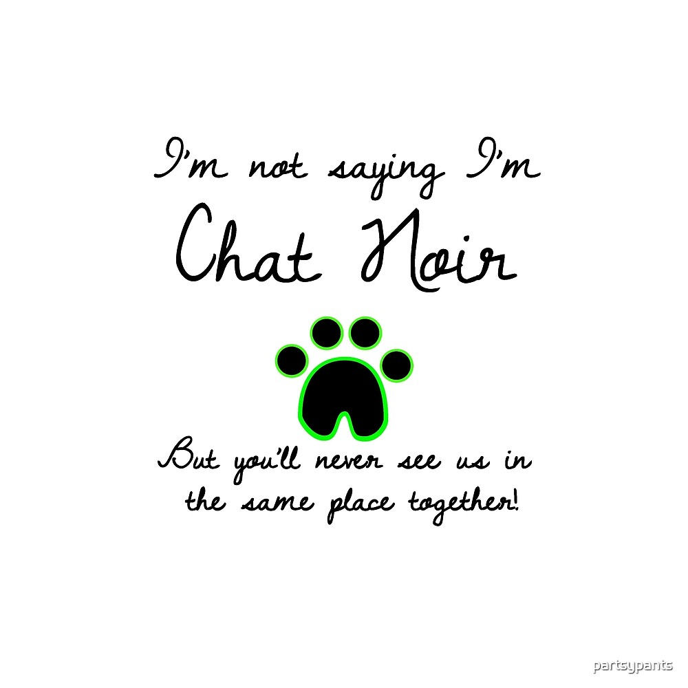 I'm Not Saying I'm Chat Noir by partsypants