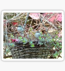 Autumn Leaves & Fairy Wrens! Through Glass. Back Patio. Sticker