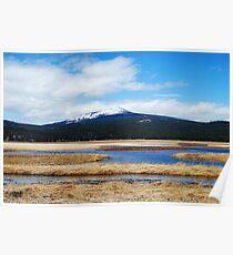 Grass Lake Poster