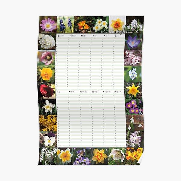 Spring Flowers - Perpetual Birthday Calendar Poster Poster