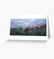 Flowers on the Edge  Greeting Card