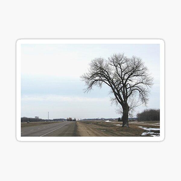 The Half Way Tree (between Winnipeg & Brandon MB) Sticker