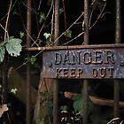 Danger by Richard Owen