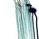 Blurred - iPhone by Richard Owen