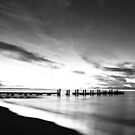 Misty Water by Richard Owen
