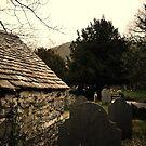 Graveyard by Richard Owen