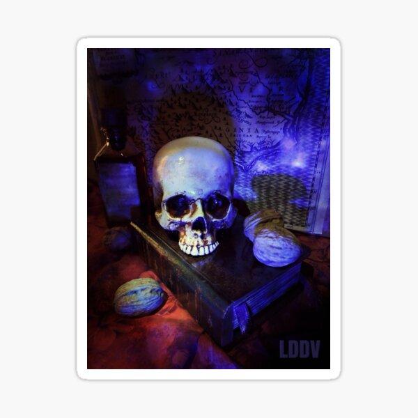 "Crâne ""En bleu"" Sticker"