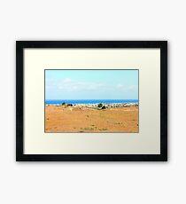 Newport Beach Framed Print