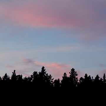 Silhouette of the Northern Nature by herbertshin