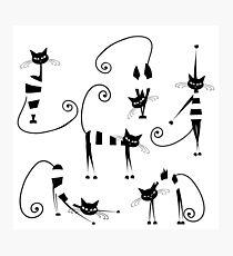 Amusing cats design set Photographic Print