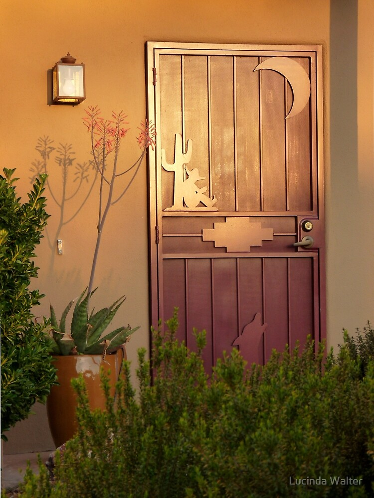 Afternoon Sun on Southwest Door by Lucinda Walter