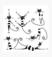 Amusing black cat design Photographic Print