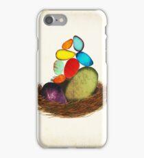 My Colorful Bird Babies iPhone Case/Skin