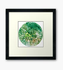 Neuron - Watercoulor - New Colour!! Framed Print