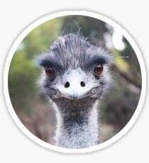 The Judging Emu - Comical Animals - Australia Sticker