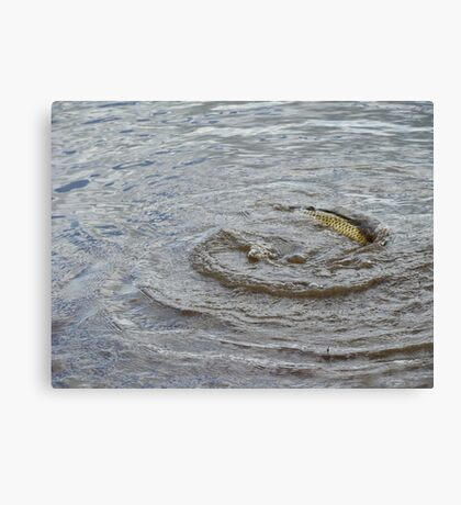 Maelstrom By Carp Canvas Print