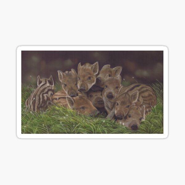 Wild Boar Humbugs Sticker