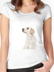 Labrador Puppy  Women's Fitted Scoop T-Shirt