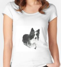Working Winter Collie Women's Fitted Scoop T-Shirt