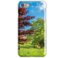 Primary Colours of Spring iPhone Case/Skin