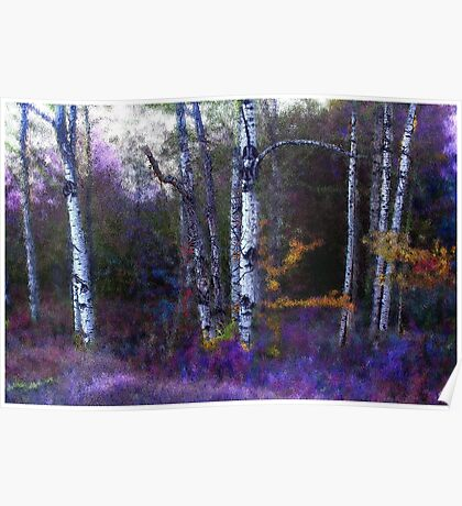 Aspen in Purple and Blue  Poster