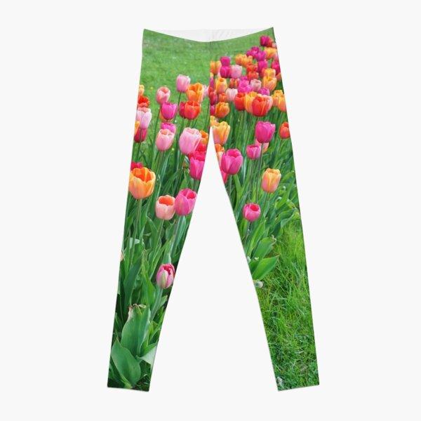 Tulips colours Leggings