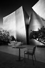 A seat in the sun - Los Angeles California USA by Norman Repacholi