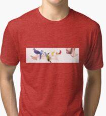 Spectrum Tri-blend T-Shirt