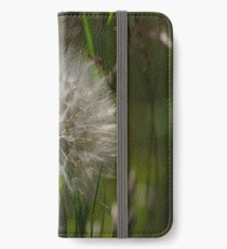 Wild Garlic Bloom iPhone Wallet/Case/Skin