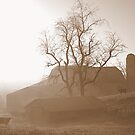 Early morning on the farm. by Billlee