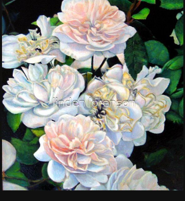 White Roses by linden lorenson