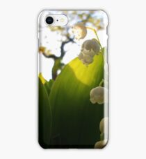 Convallaria Majalis - Lily Of The Valley Flower Filled With Sunrise | Melville, New York iPhone Case/Skin