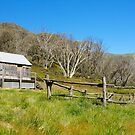 Snowy Mountains Hut by NaturalCultural
