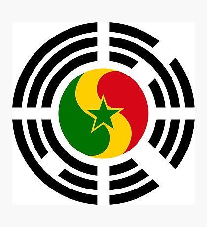 Korean Senegalese Multinational Patriot Flag Series Photographic Print