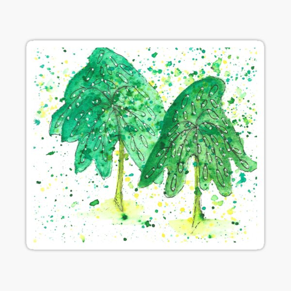 Green willow trees Sticker
