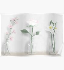 Flowers in a jar Poster
