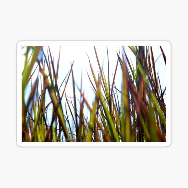 Grass roots Sticker